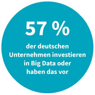 Deutsche Unternehmen - Investment in Big Data