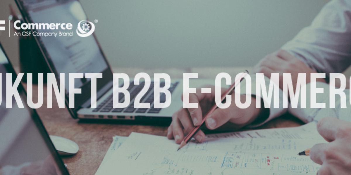 B2B-Fast-Commerce