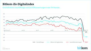Bitkom/IFO Digitalindex 2020