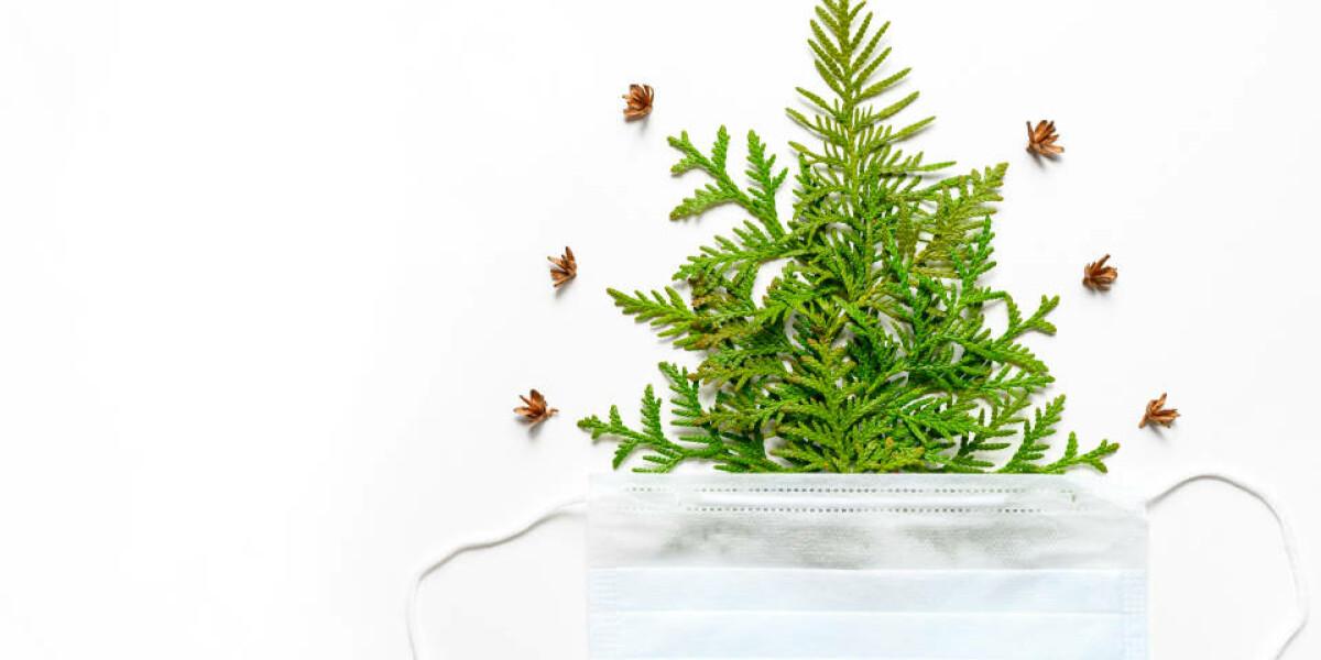 Weihnachtsbaum mit Mundschutz