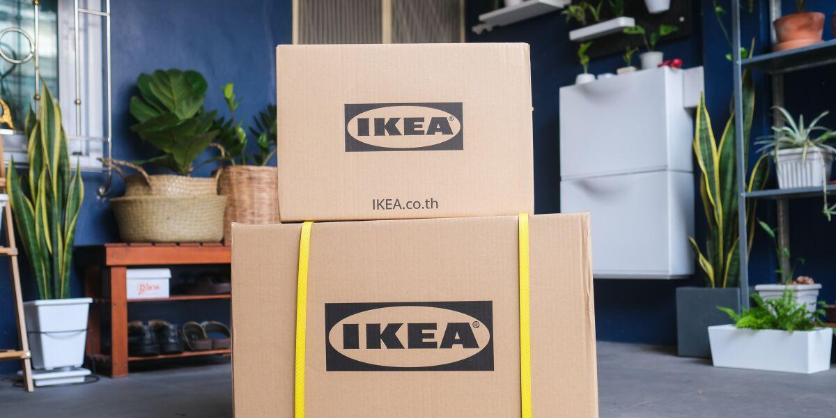 Kisten Kartons Ikea Pflanzen Umzug