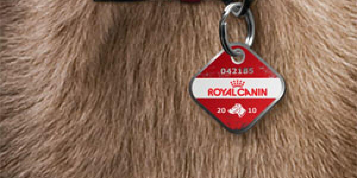 Royal Canin wirbt in der Spiegel-App