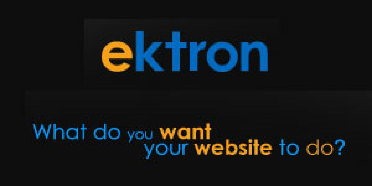 Ektron kooperiert mit Brightcove, Lionbridge und Webtrends