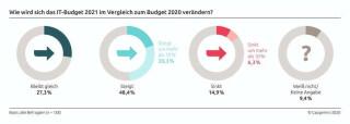 Entwicklung der IT-Budgets 2021