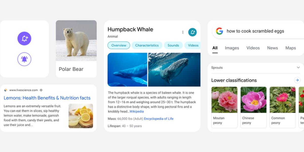 Googles mobile Suche