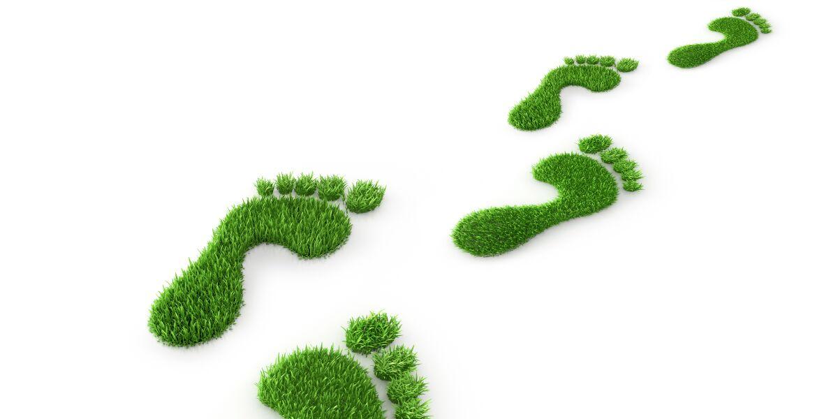Gruene Fußabdruecke aus Gras