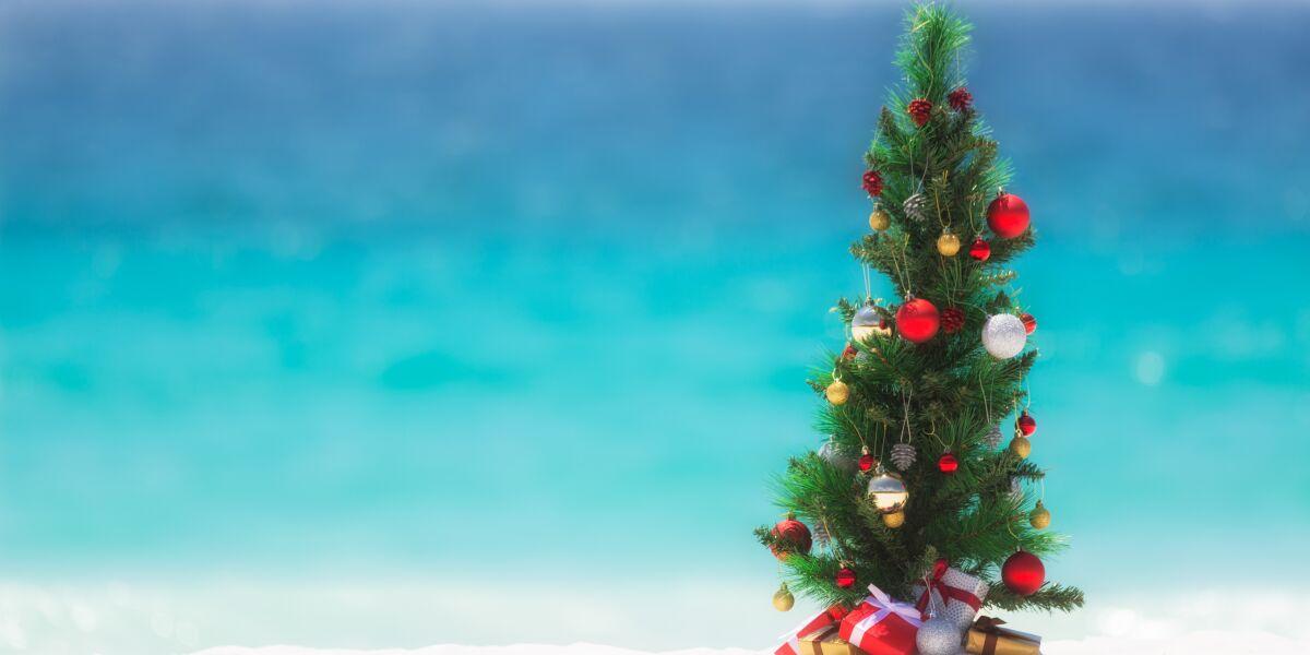 Weihnachtsbaum am Meer