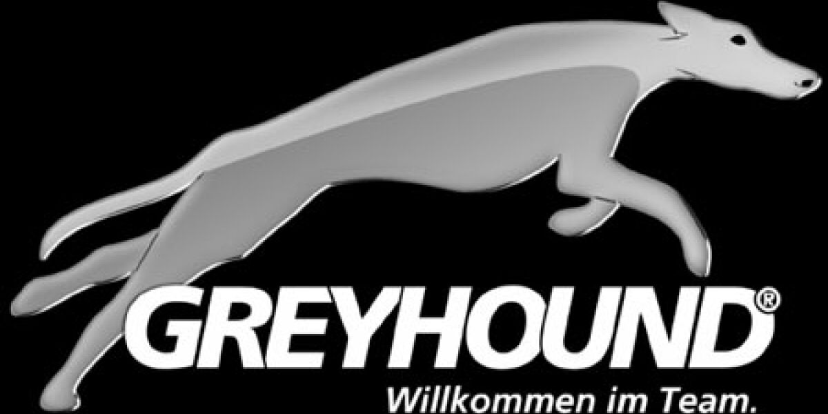 Greyhound gründet Vertriebsprogramm