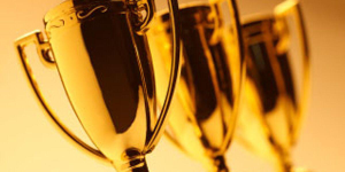 """Shortlist zum BVDW-Juniorenpreis """"Challenge 2013"""" steht fest"""