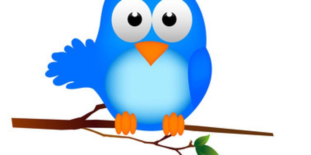 Deal zwischen Twitter und Stripe?