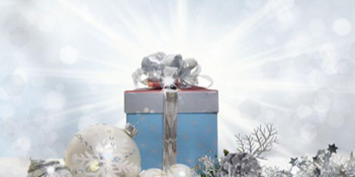 Online-Weihnachtsumsatz 2013