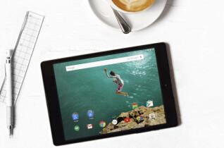 Der Akku des Google Nexus 9 soll dank einer Kapazität von 6.700 mAh beim Surfen mit WLAN bis zu 9,5 Stunden durchhalten und bei Internet-Sitzungen per LTE für bis zu 8,5 Stunden reichen. Die Stand-by-Zeit gibt Google mit bis zu 30 Tagen an.