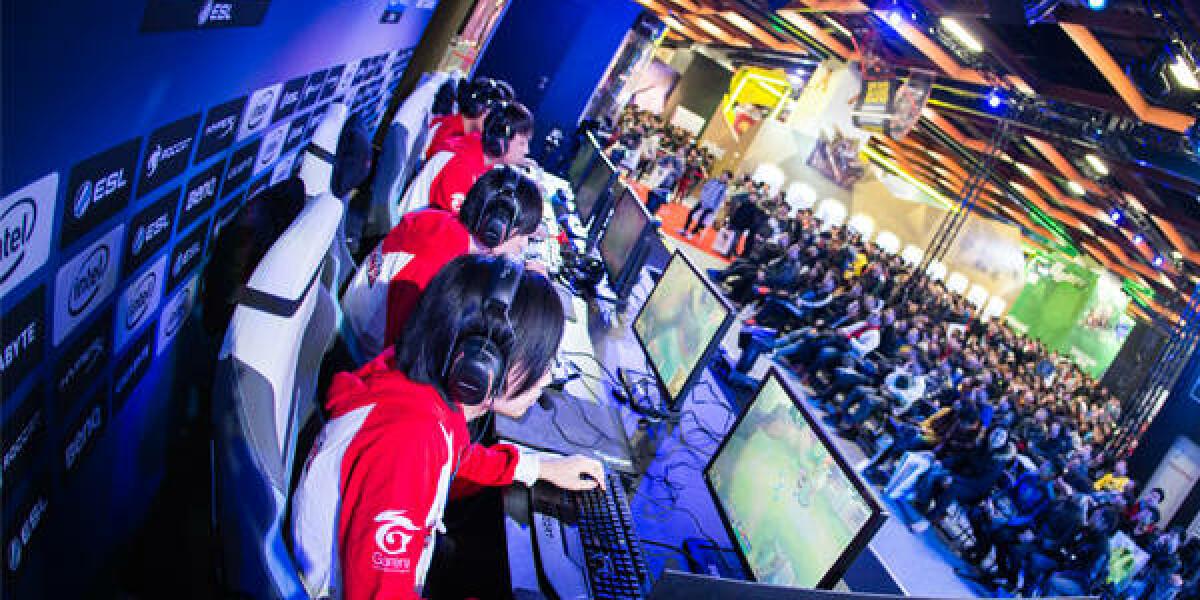 Mehrere Computerspieler sitzen beim Spielen vor ihrem PC