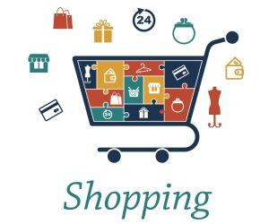 Webshopping Einkaufswagen Icons