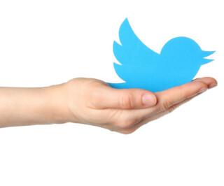 Twitter-Vogel auf der Hand