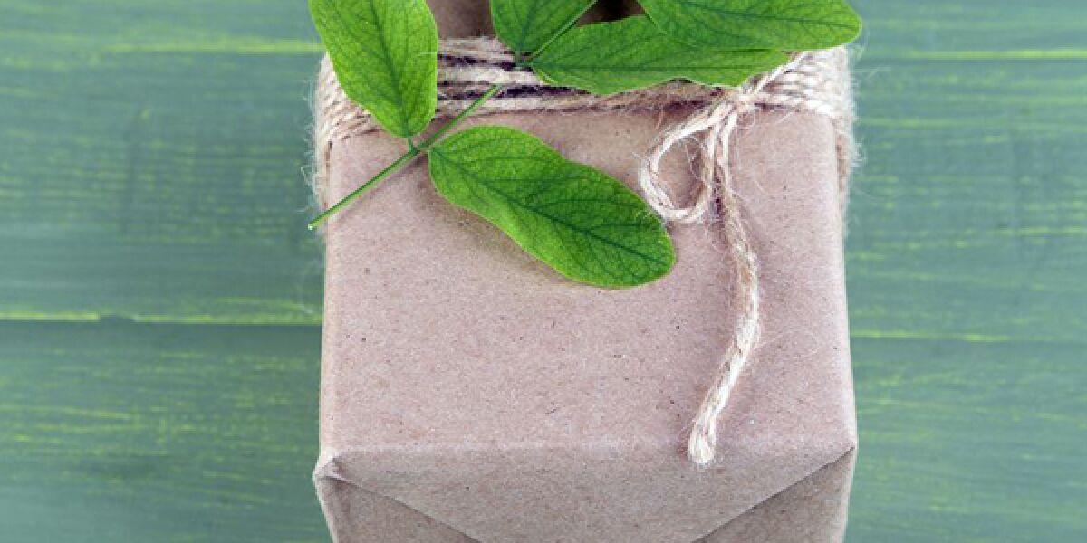 Päckchen mit Blättern