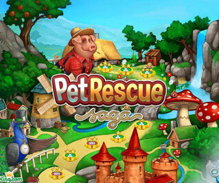 Pet Rescue Logo