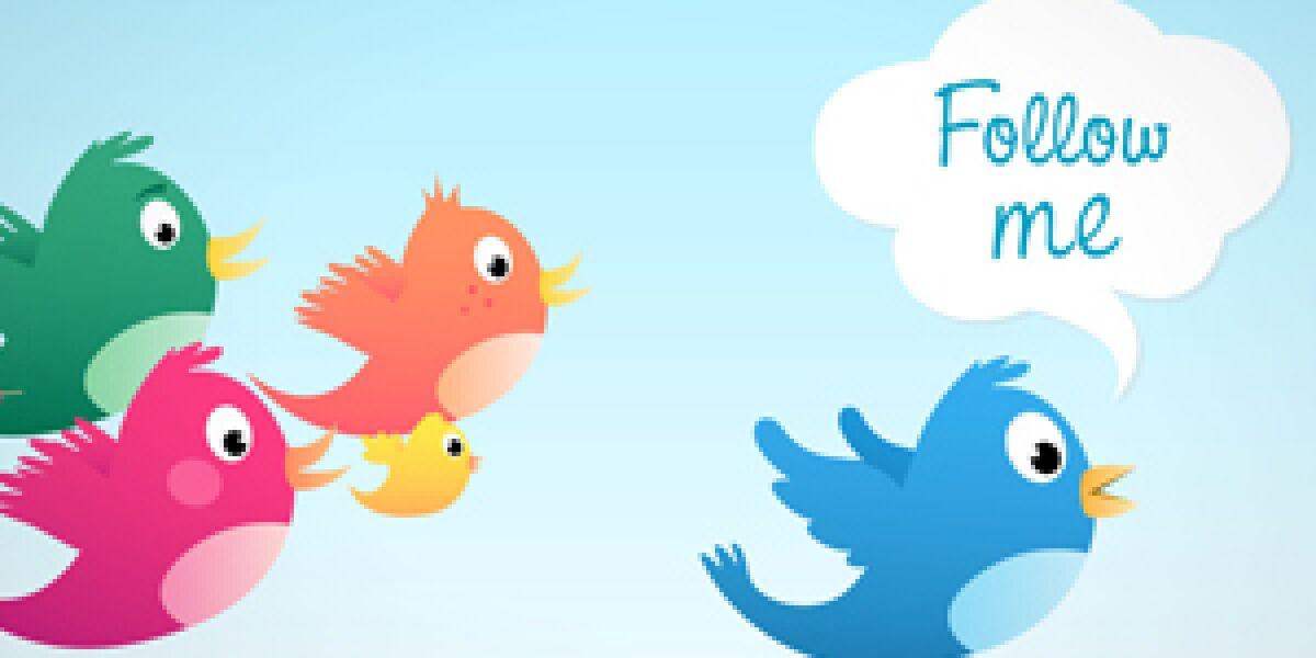 Mehrere bunte Vögel folgen einem blauen Vogel