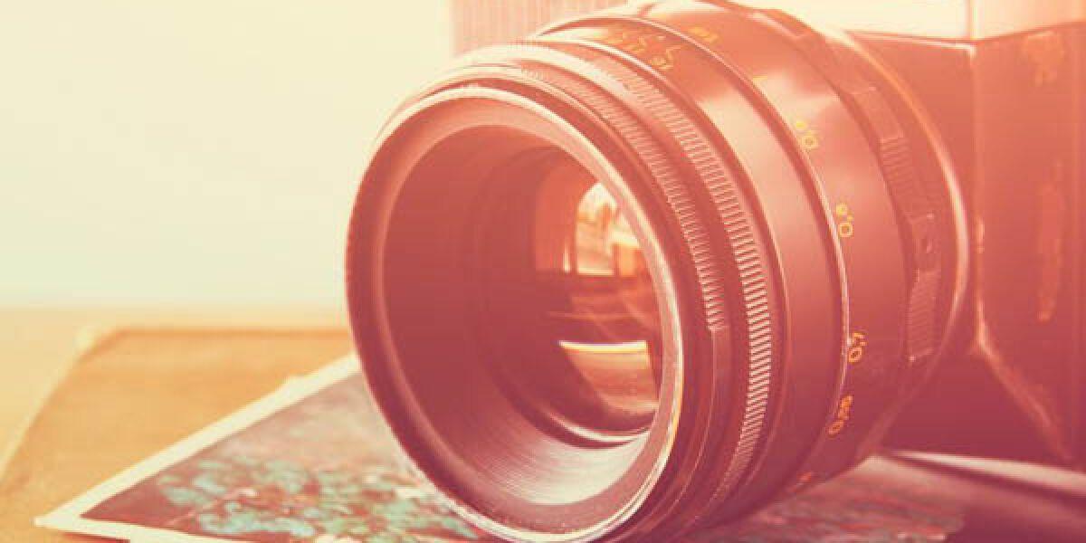 Shutterstock.com/tomertu