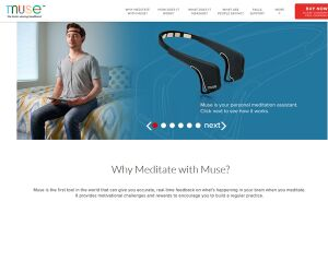 Ashton Kutcher beteiligt an Muse