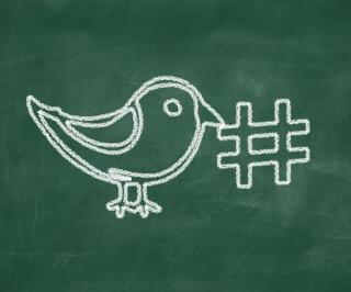 Vogel von Twitter