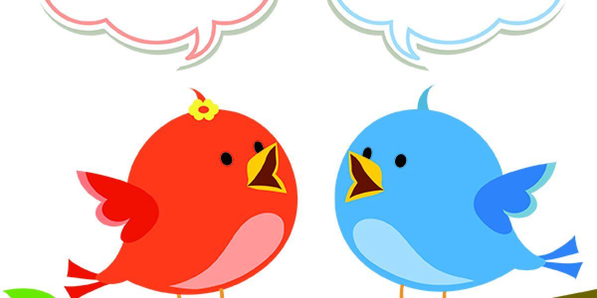 Zwei Vögel zwitschern