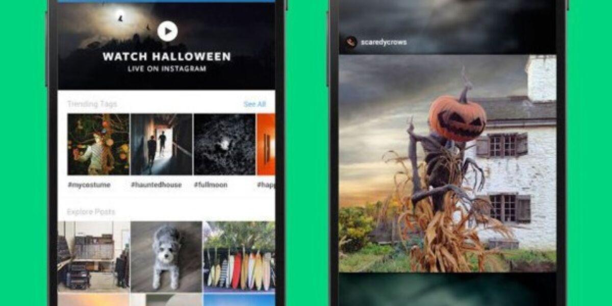 Instagram kuratierte Inhalte