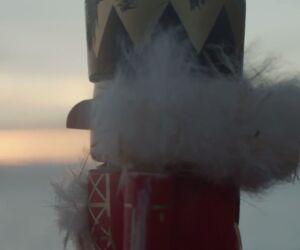 Nussknacker blickt aufs Meer