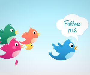 Vögel Follow me