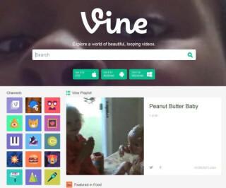 Vine Webseite