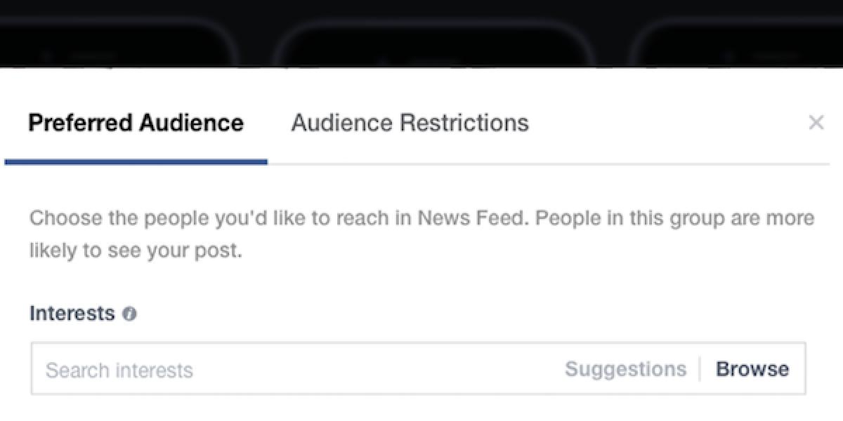 Facebook-preferred-audience