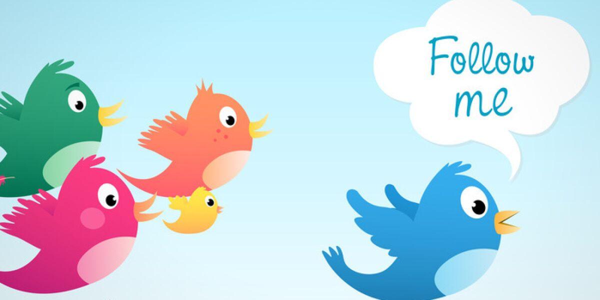 Vögel fliegen hinter Vogel
