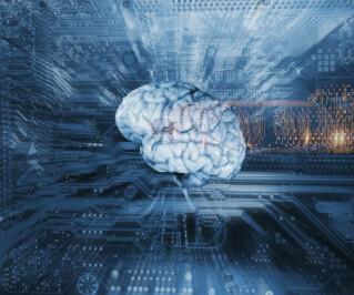 Digitales Gehirn