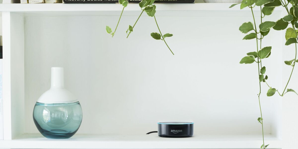 Amazons Echo Dot im Regal