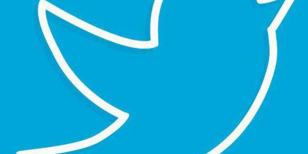 Der Twitter-Vogel