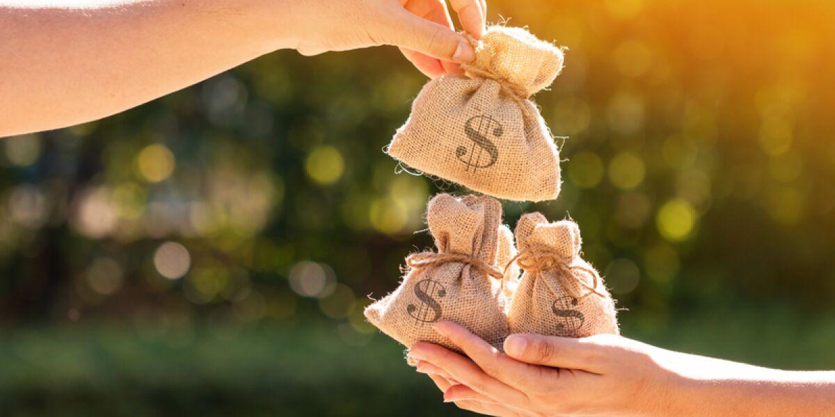 Dollarsäcke in einer Hand