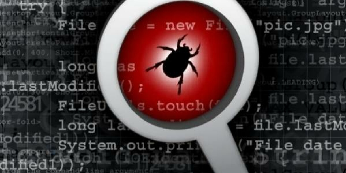 software-bug