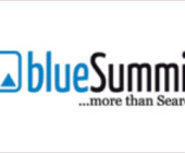 Blue Summit Media gewinnt Search-Etat