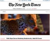 New York Times setzt auf Native Advertising