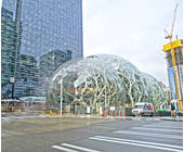 Amazon Biosphäre in Seattle